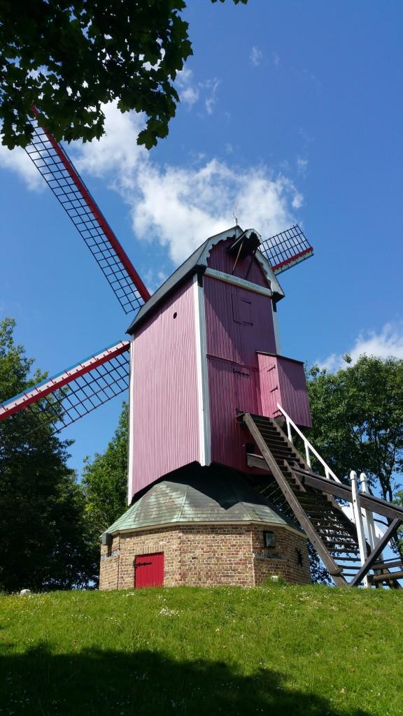 moulins à vente à Sainte-Anne - bruges