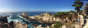Point Lobos, Monterey, Californie