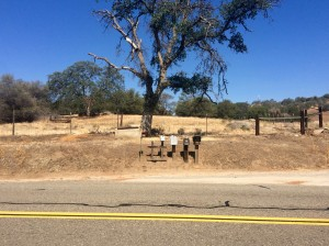 RoadTrip_Californie
