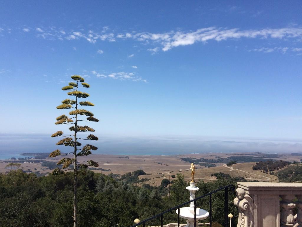 Vue de Hearst Castle à San Simeon en Californie