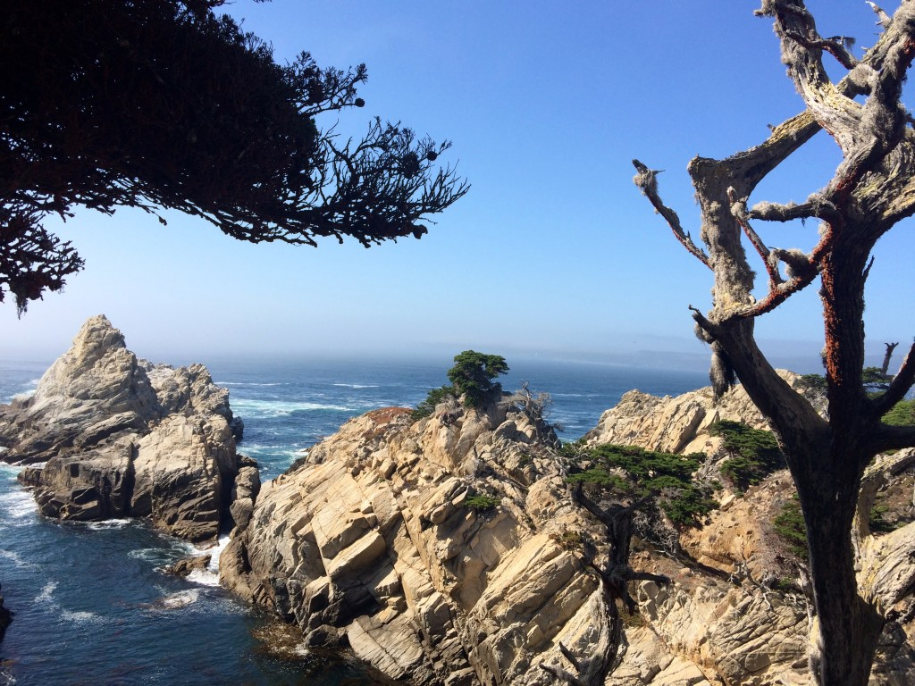 Point Lobos State Park, Californie