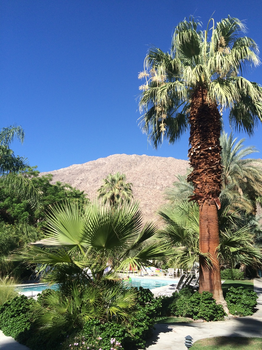 The Chase Hotel à Palm Springs en Californie - piscine