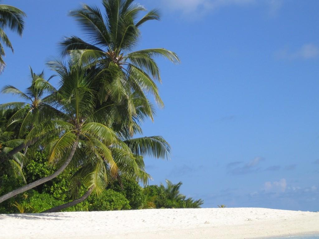 plage de l'île de Velavaru aux Maldives
