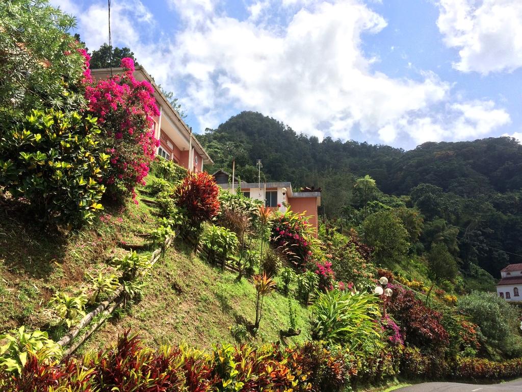 village de Fonds Saint-Denis en Martinique