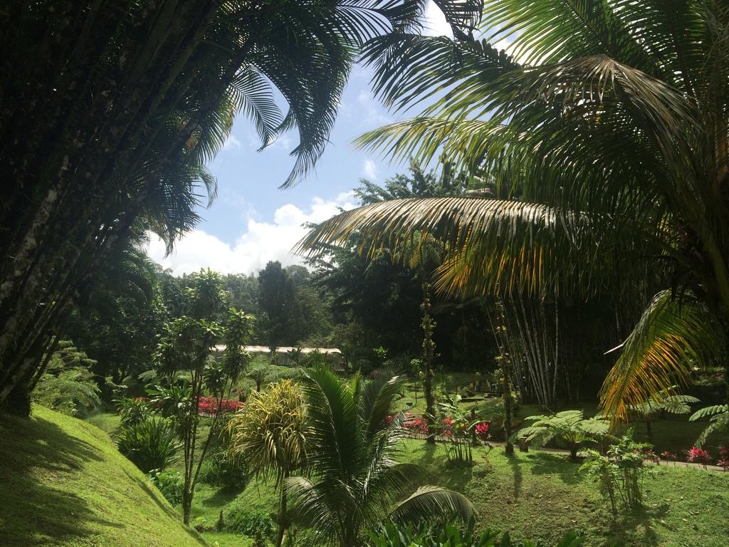 Jardins botaniques du domaine d'Emeraude en Martinique