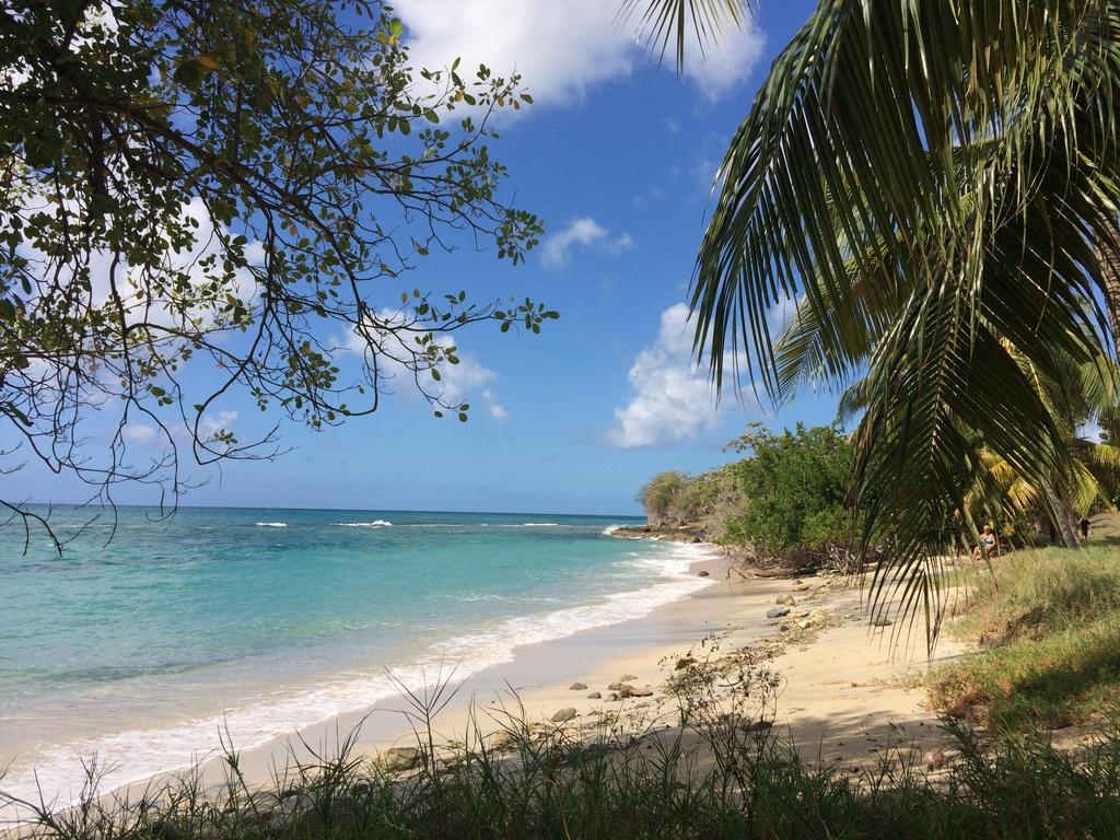 Une des plages de Sainte-Luce en Martinique