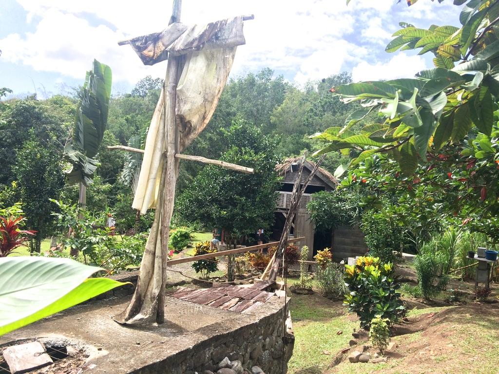 Visite de la savane des Esclaves en Martinique