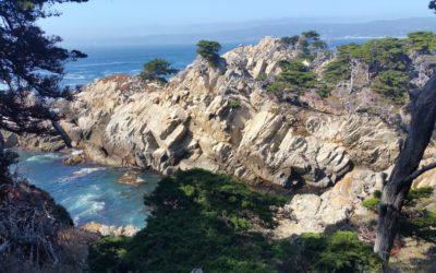 Point Lobos State Reserve : coup de foudre sur la route 1 en Californie !