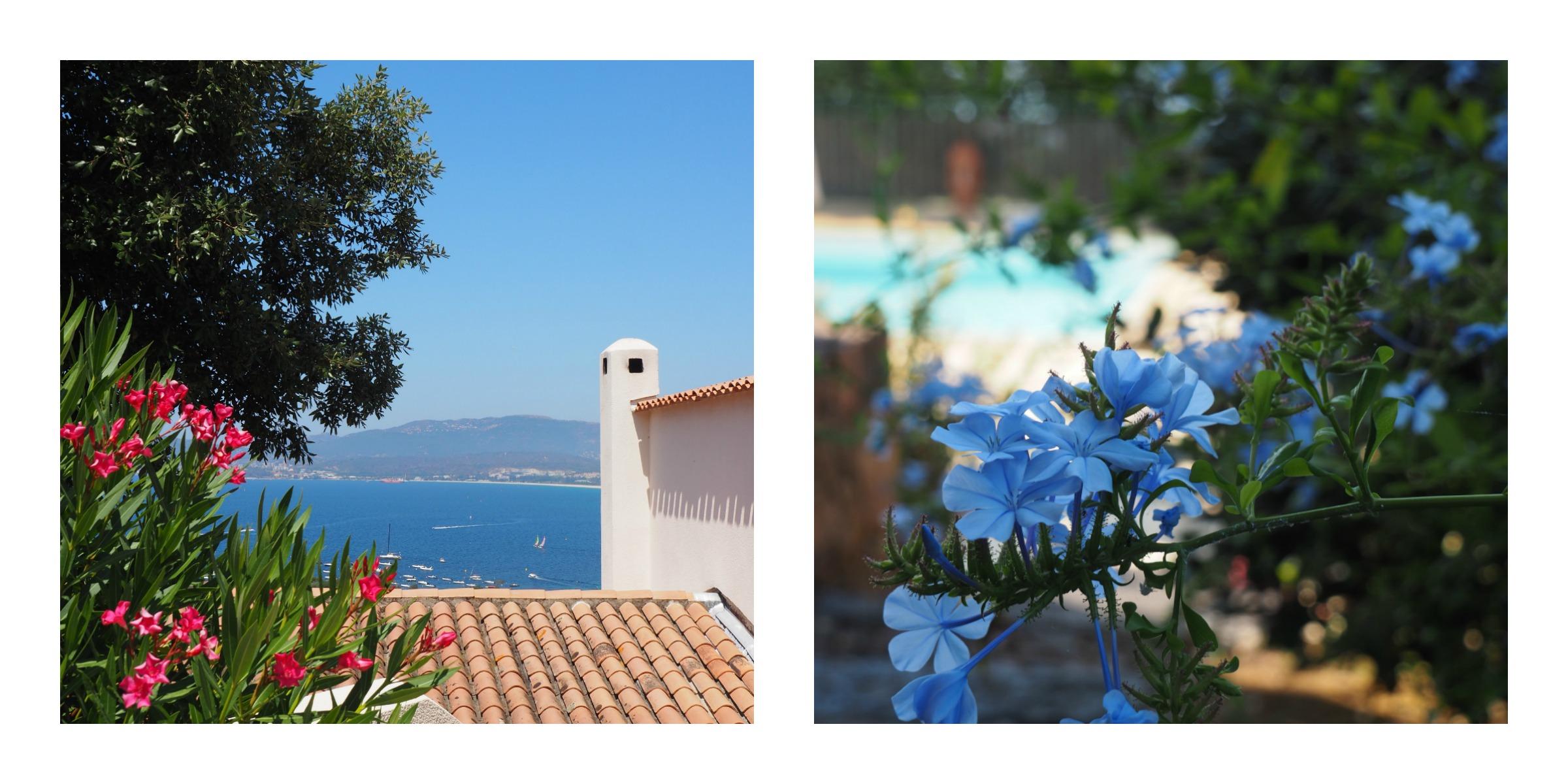 Vue sur la baie d'Ajaccio et jardin à Porticcio