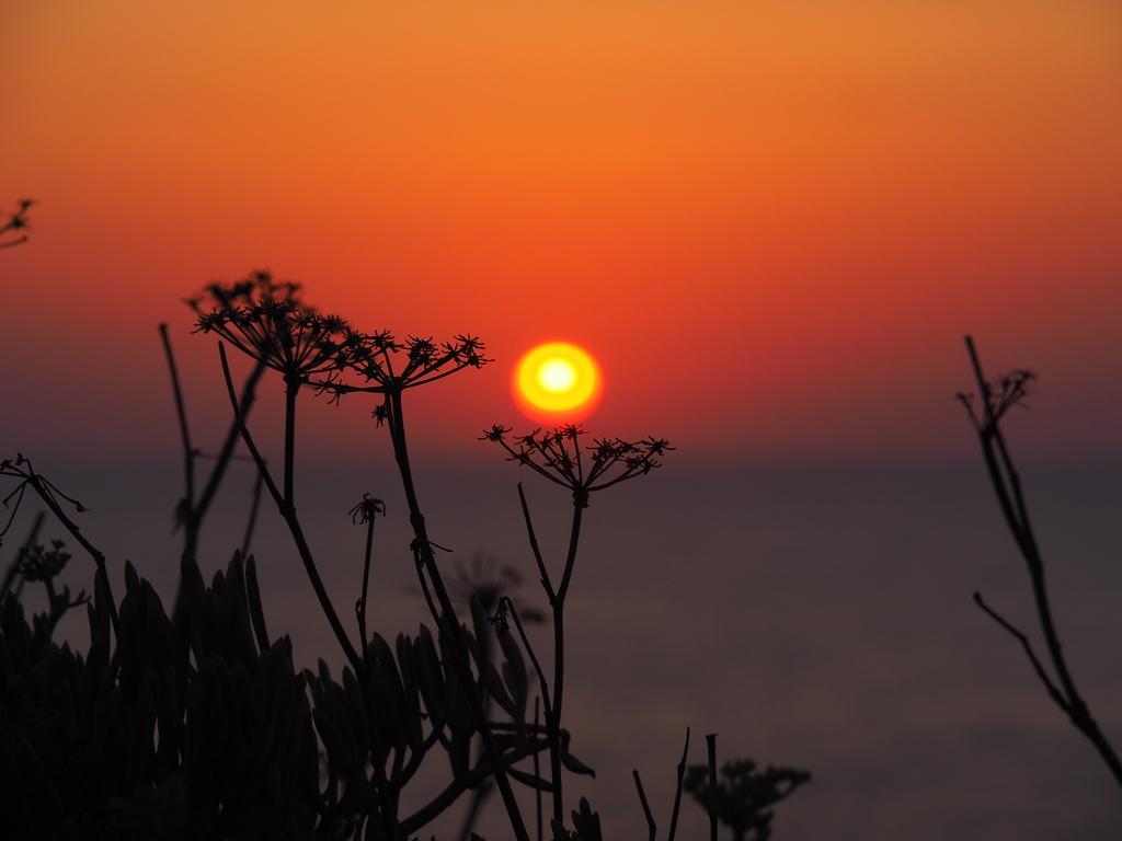 Coucher de soleil, îles sanguinaires en Corse