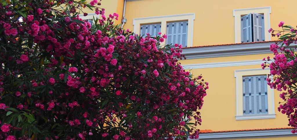 Les immeubles colorés à Ajaccio en Corse