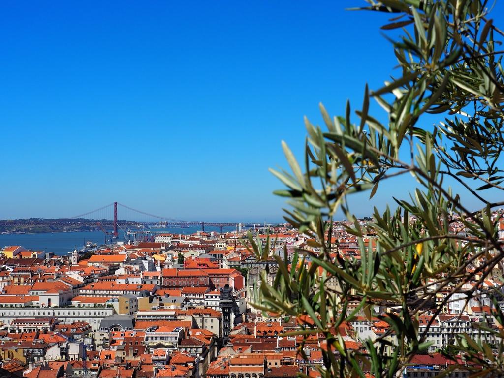 Vue sur les toits de Lisbonne du Château Sao Jorge