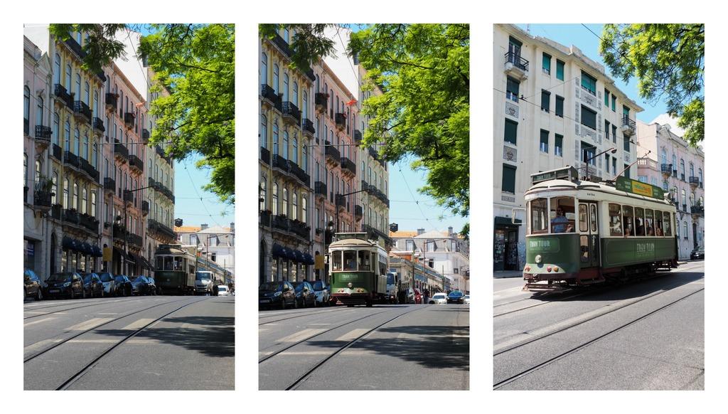la-vie-en-rose-flamant-lisbonne-tram