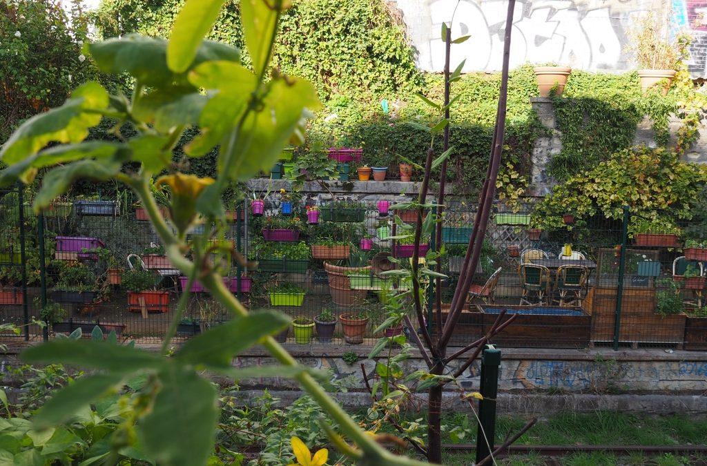La REcyclerie à Paris : visite d'un Tiers-Lieu éco-responsable