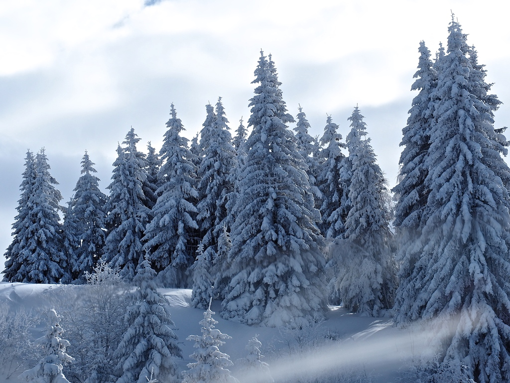 Megève en hiver, dans la brume