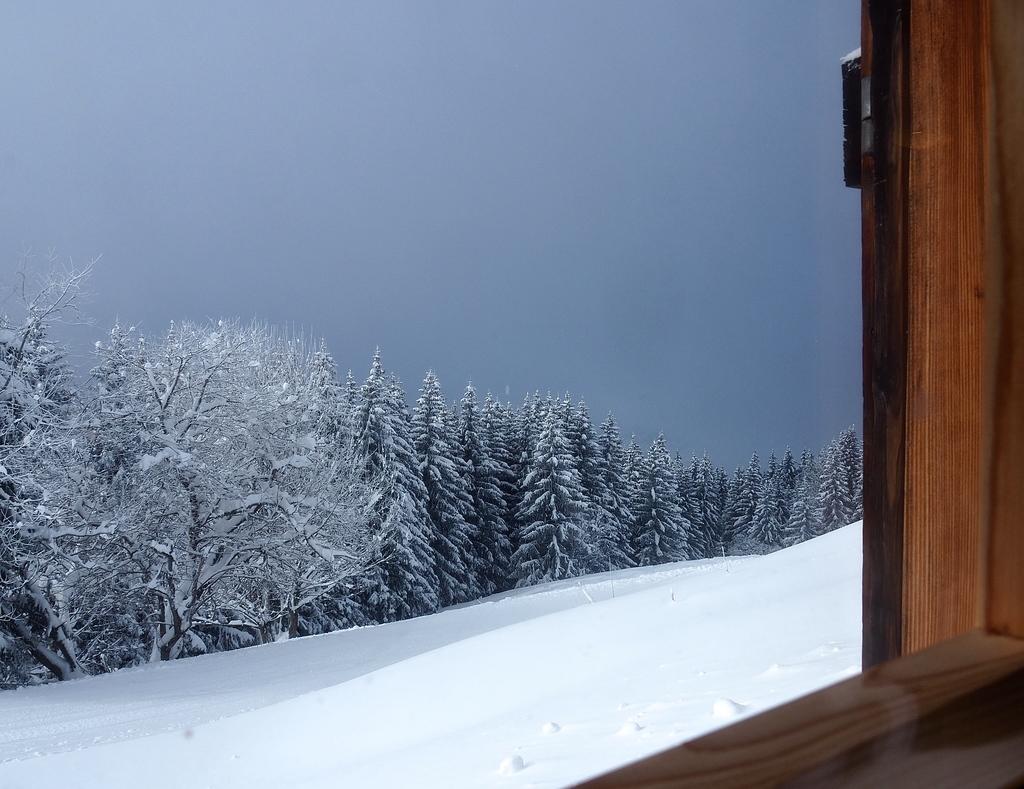 Megève en hiver, vue du restaurant le Petit Forestier