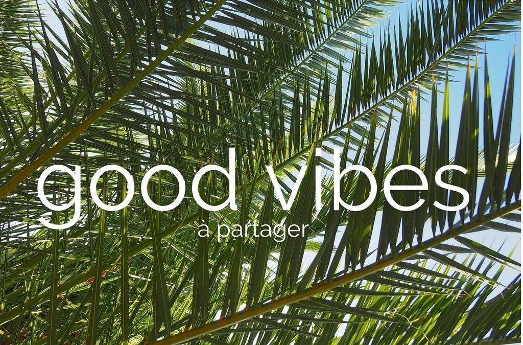 Les good vibes du dimanche #1