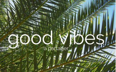 Les good vibes du dimanche #2