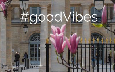 Les good vibes du dimanche #4
