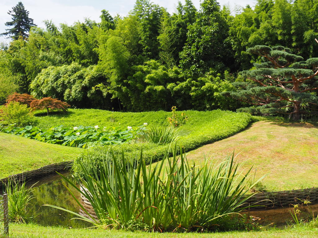 La Bambouseraie à Anduze, jardin japonais