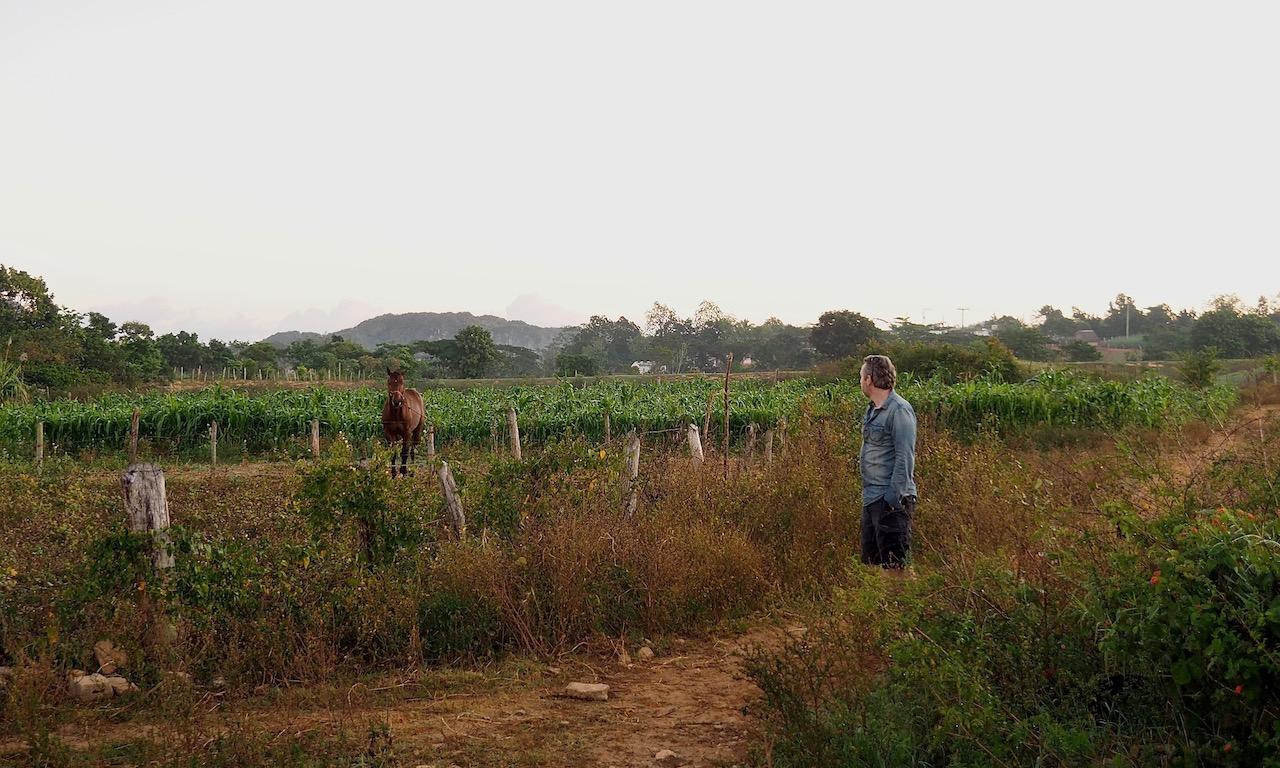3 jours à Viñales (et au milieu des Mogotes)... une parenthèse hors du temps