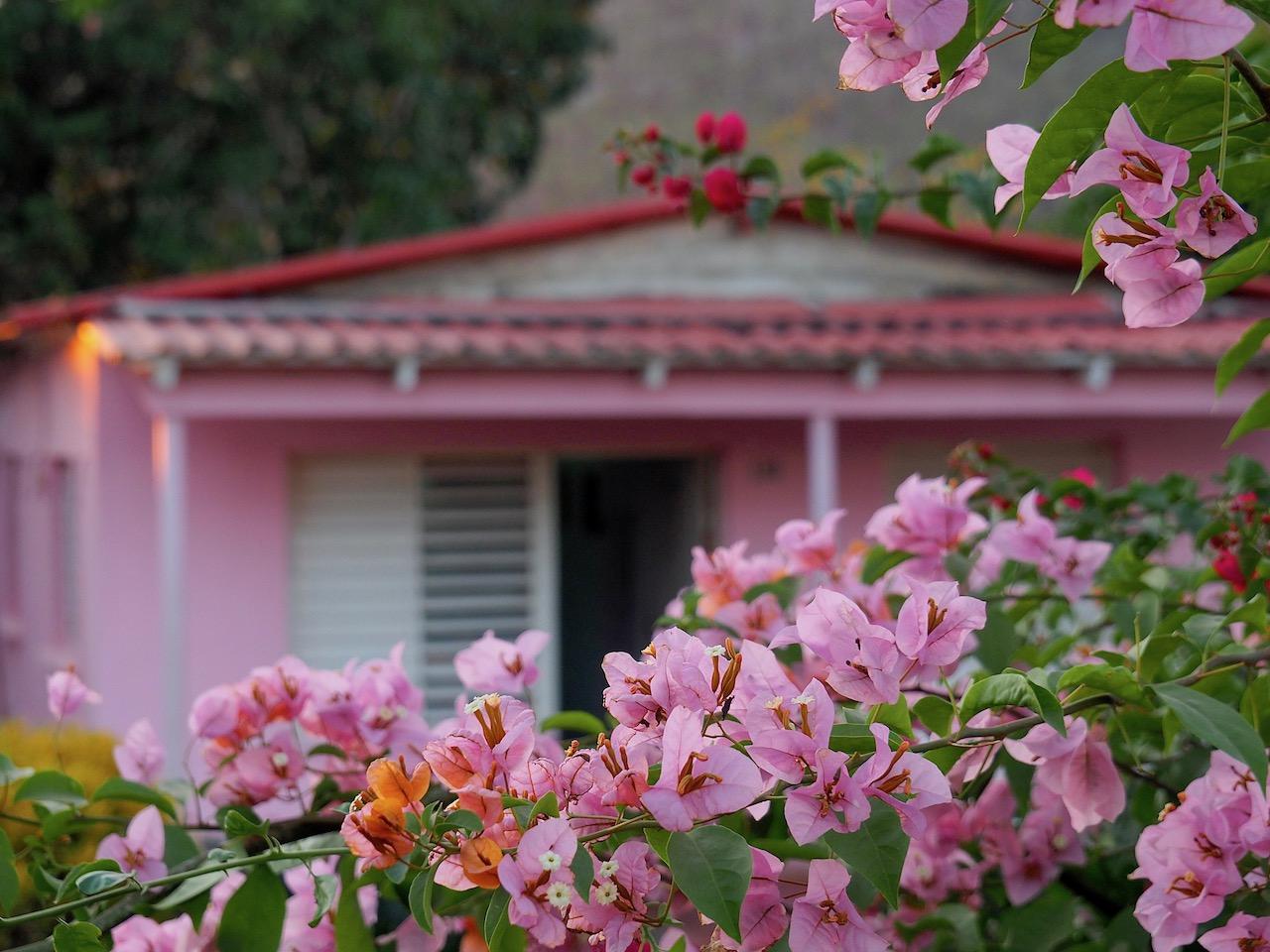 3 jours à Viñales (et au milieu des Mogotes)... une parenthèse hors du temps - La maison rose
