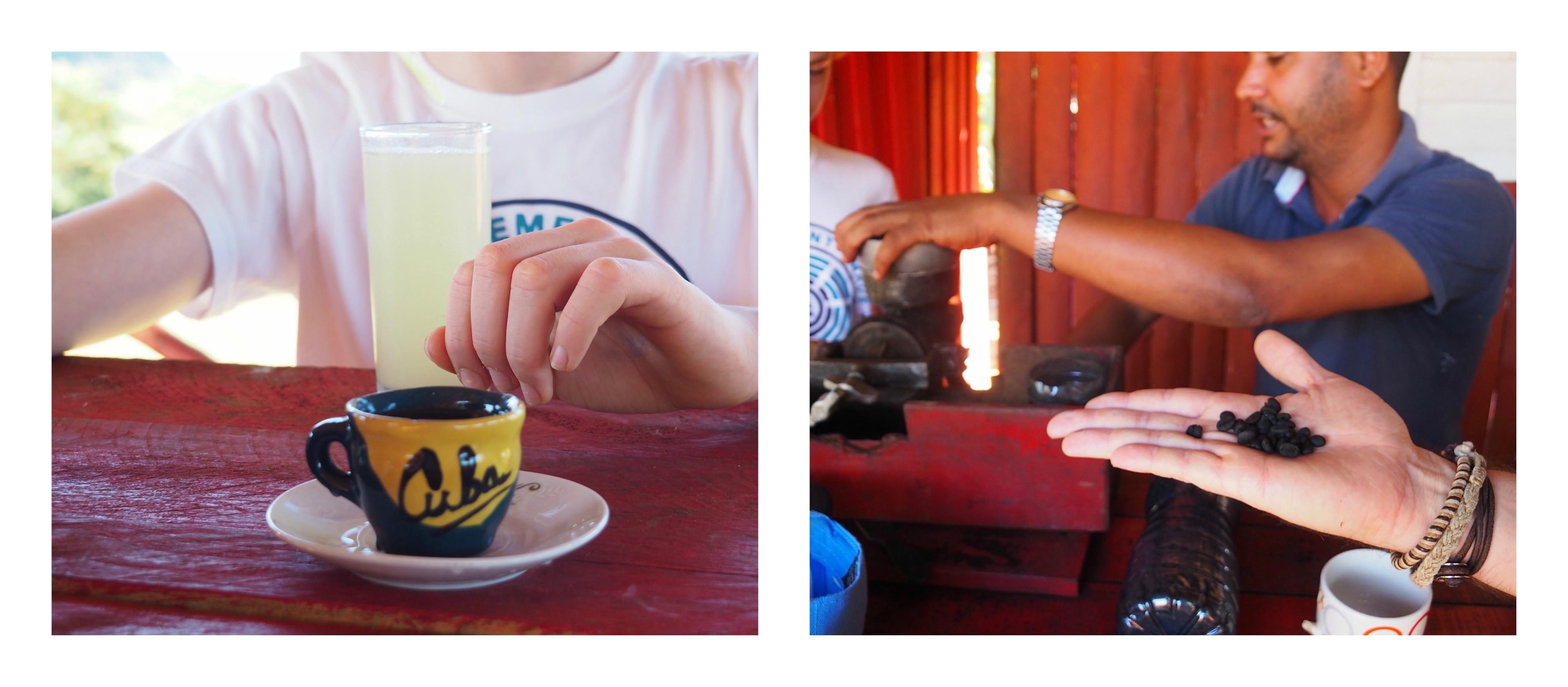 3 jours à Viñales (et au milieu des Mogotes)... une parenthèse hors du temps - visite producteur de café
