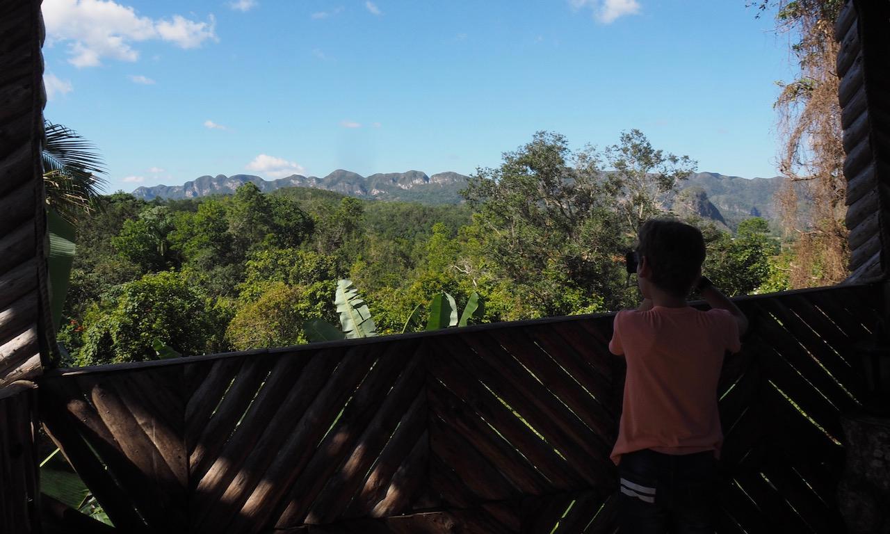 3 jours à Viñales (et au milieu des Mogotes)... une parenthèse hors du temps - Vue du Paladar Las Terraza