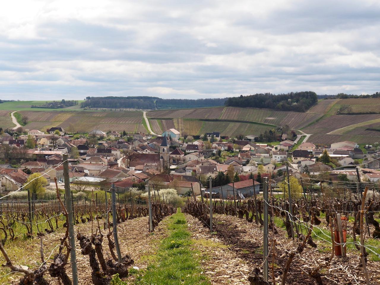 Week-end en Aube en Champagne - visite des vignes - Philippe Fourrier - vue sur le village de Baroville