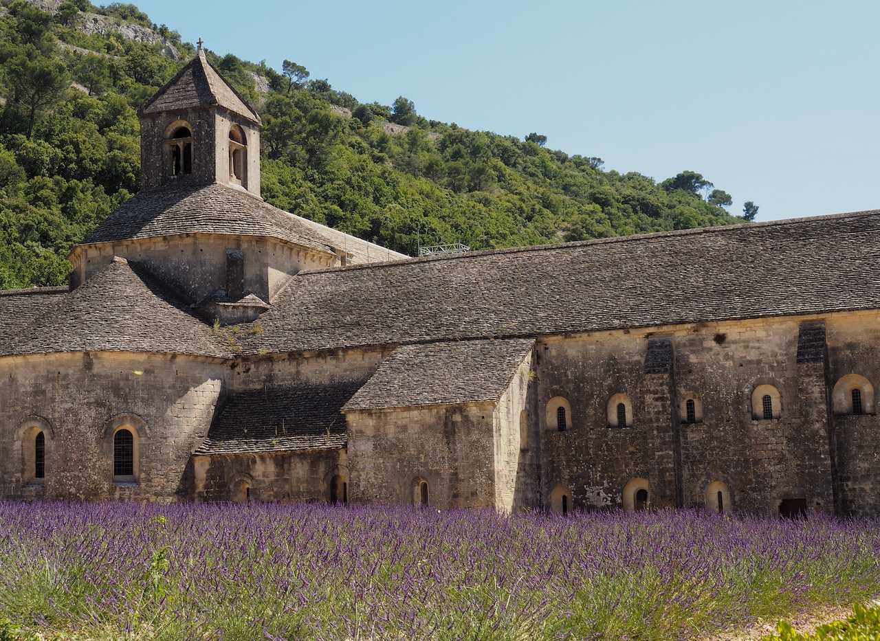 découvrir l'Abbaye Notre Dame de Sénanque et ses champs de lavande