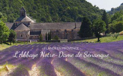 Découvrir L'Abbaye Notre-Dame de Sénanque et ses champs de lavande